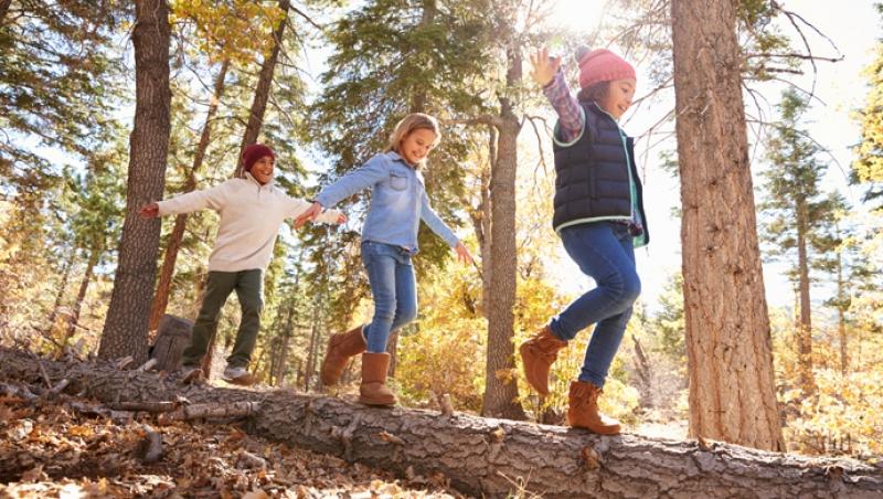 La actividad física más adecuada - Compartir en Familia