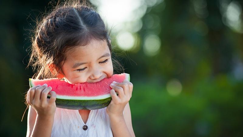 La relación con los alimentos - Compartir en Familia