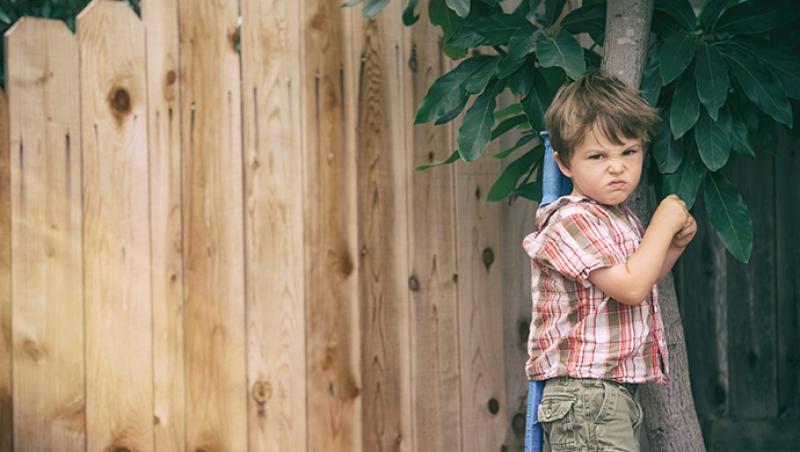 Aprender a gestionar la frustración - Compartir en Familia
