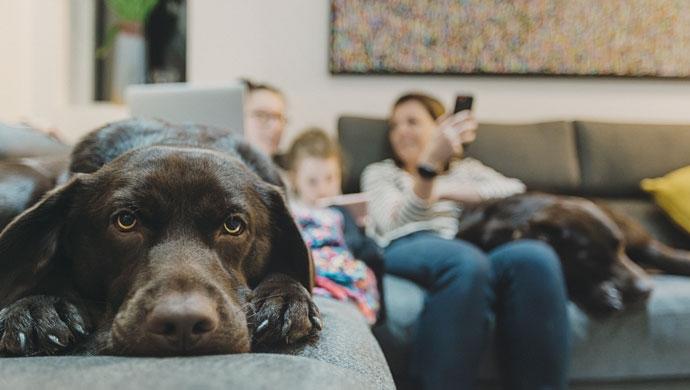 La familia y uno más - Compartir en Familia
